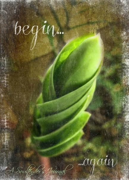 begin again3